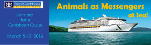 cruise banner aam-at-sea-header-2016